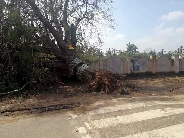 Save Delta Region - Gaja Cyclone - Relief Campaign  சோழதேசம் மீட்க..
