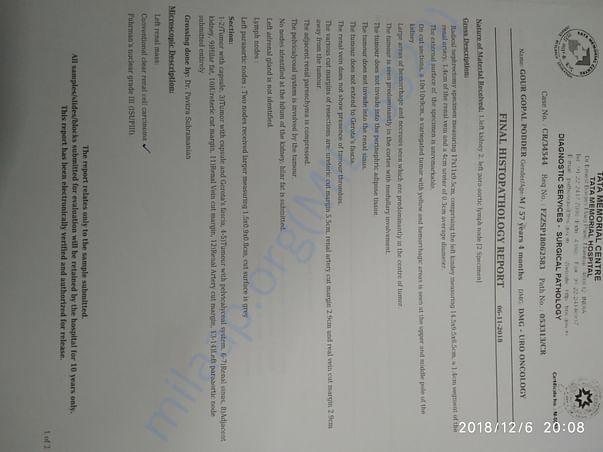 Histopathology 1