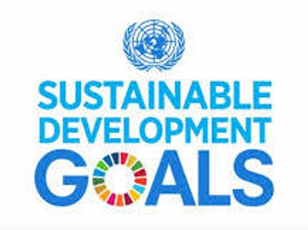 Support Us To Participate in Global Goals MUN
