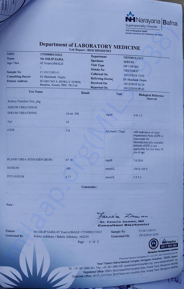 Kidney Creatinine test report