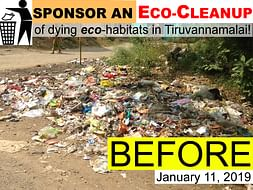 Sponsor an Eco-Cleanup of dying eco-habitats in Tiruvannamalai