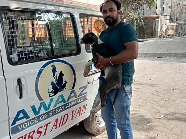 Help Awaaz to Help Stray Animals of Mumbai