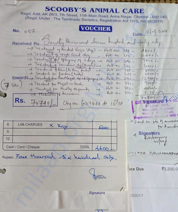 Some invoices of our work: Invoice 1