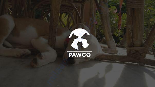 Pawco Presentation