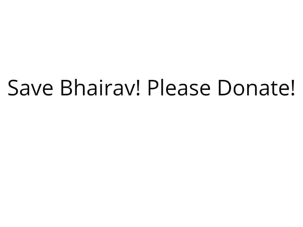 Save 'BHAIRAV', Please Donate and Save His Life.