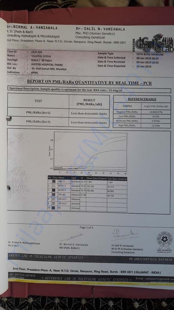 Report on PML / RAR
