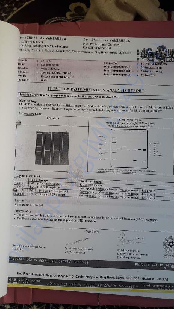 Mutation Analysis Report