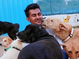 Support Haris Ali to rescue more animals in need