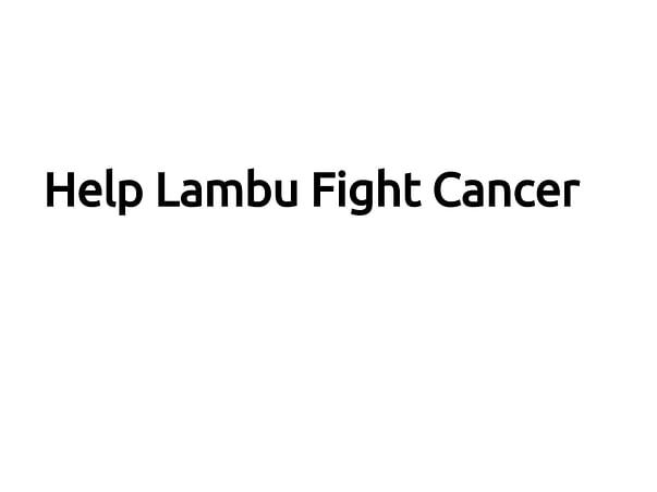 Help Lambu Fight Cancer