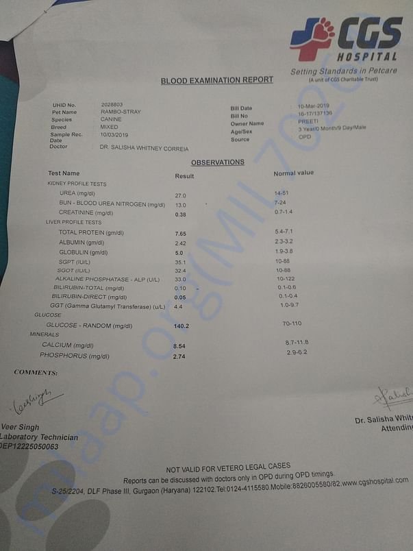 Blood report pg 2