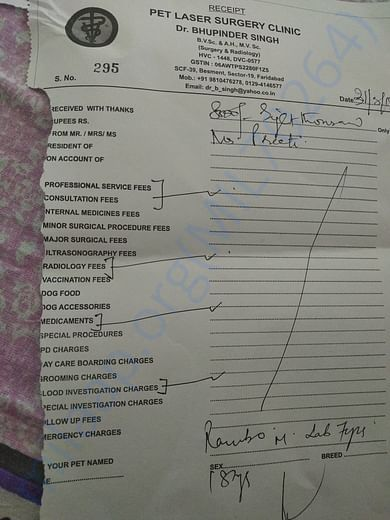 Rambo's vet visit and test receipt