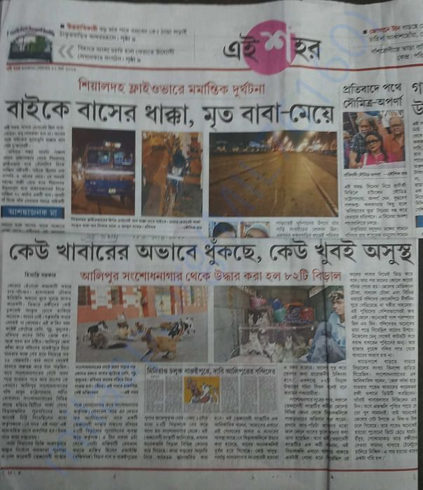 News clipping of 82 cat rescue from locked jail campus by LOVE N CARE