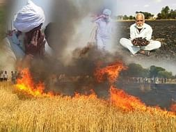 Help Farmers of Punjab