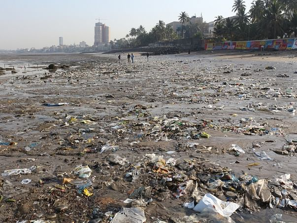Plastic Clean Up Drive In Mumbai