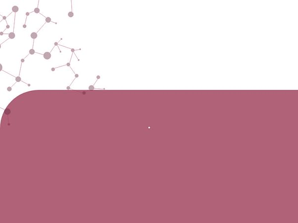Help Me Attend Asia Youth International MUN 2019
