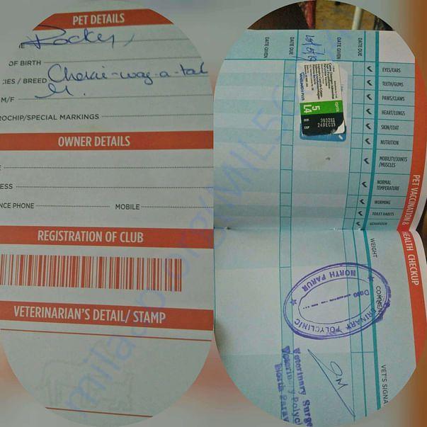 Health passport with Multi vaccine stamp Rocky