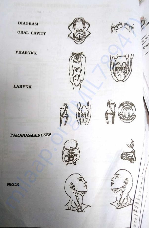 Diagram oral cavity