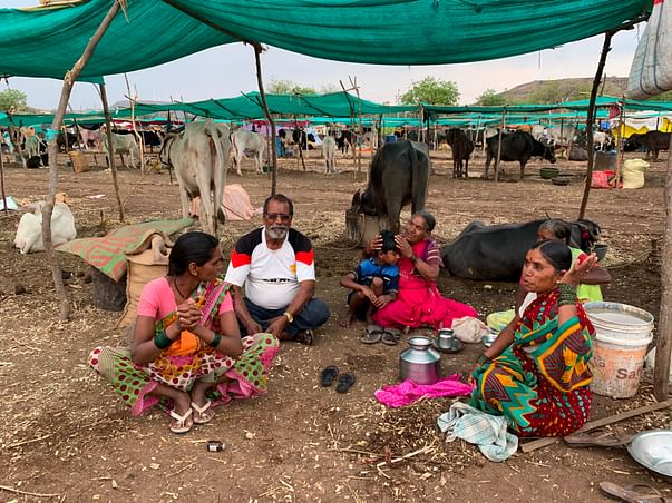 Help farmers in severe drought condition of Maharashtra