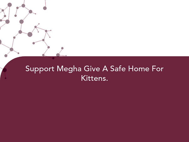 Support Megha Give A Safe Home For Kittens.