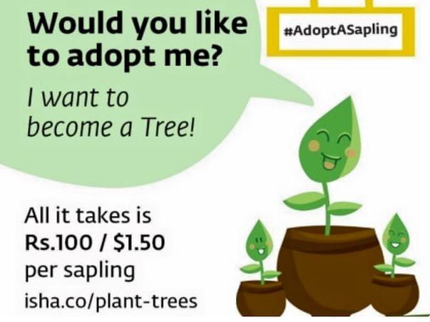 Adopt a Sapling, see it grow as a beautiful Tree🌳🌴