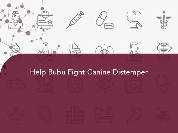 Help Bubu Fight Canine Distemper