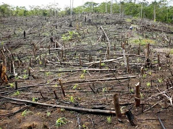 Help us to save Earth