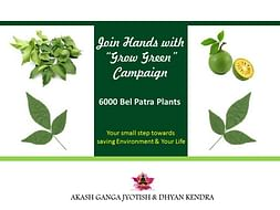 """""""GROW GREEN"""" Campaign- Save Environment"""