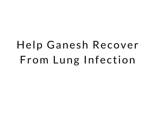 Help Ganesh Recover From Lung Infection