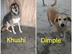 Help Dimple and Khushi have second chance at life