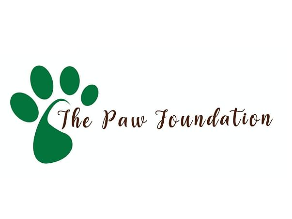 """Help """"The Paw Foundation"""" for Rescue & Treatment of Helpless Animals."""