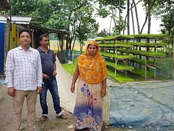 Need a Modern Paddy Transplanter For Women SHG For Rural Enterprise