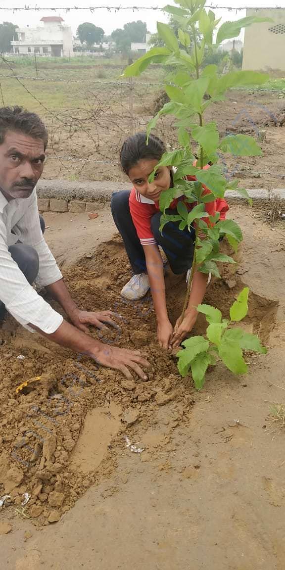 Tree Plantation at Ballabhagarh  Sun Rise Public School
