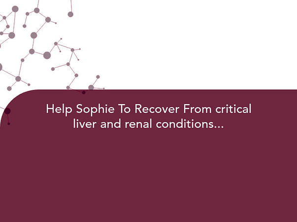 Help Sophie To Recover From critical liver and renal conditions...