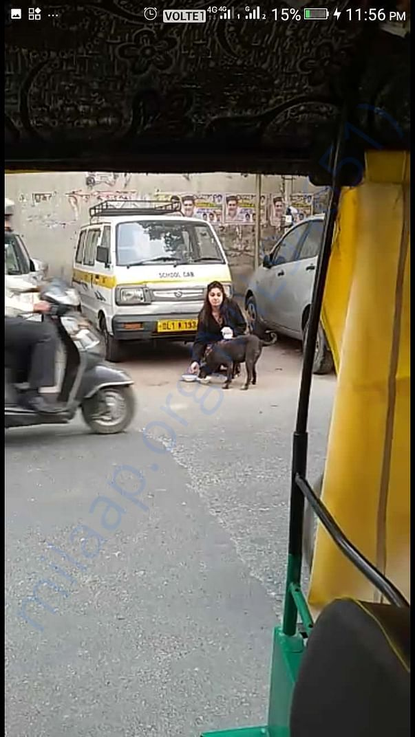 Feeding hungry strays. Please help in getting food for them