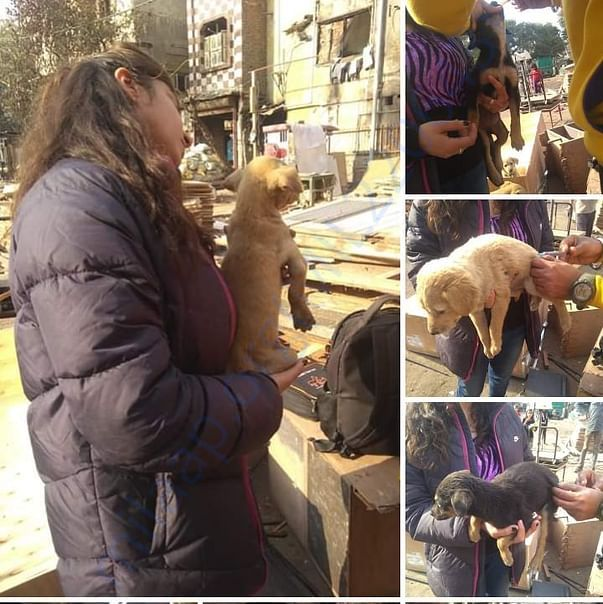 Vaccination campaign done by Chanu in her society