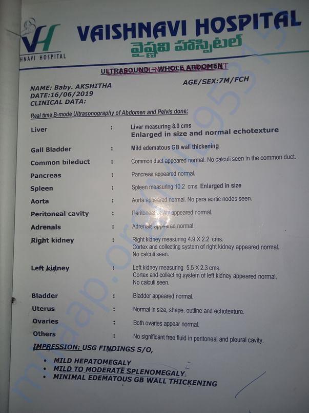 spleen, liver test report
