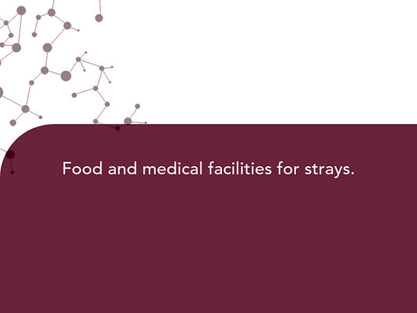 Food and medical facilities for strays.