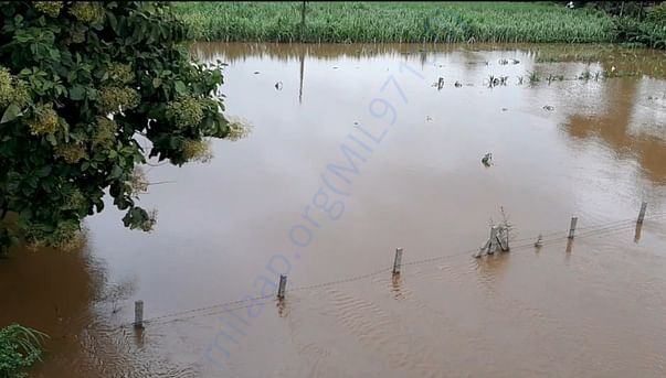 Krishna river water coming into our village