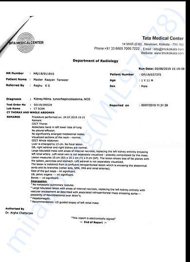 Report of Rayaan
