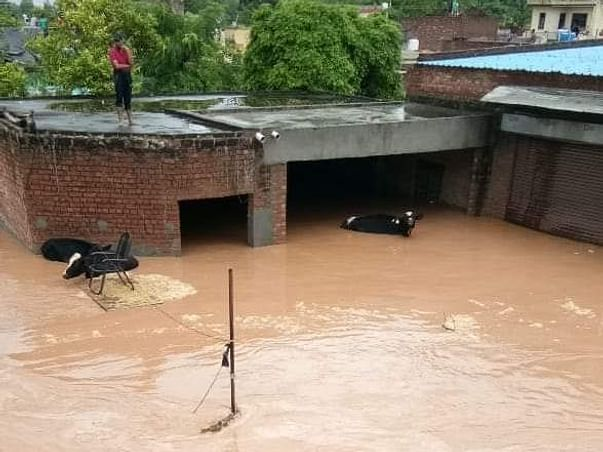 Help  Punjab ( Punjab badly affected by floods )