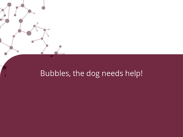 Bubbles, the dog needs help!