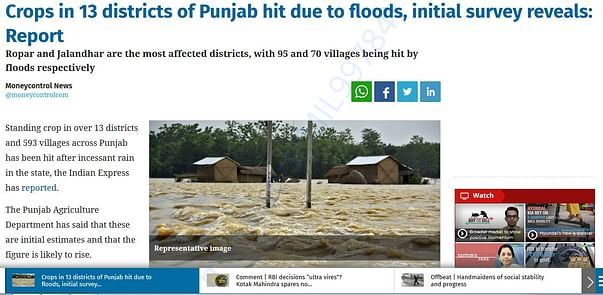 Crops in 13 districts of Punjab hit due to floods, initial survey reve