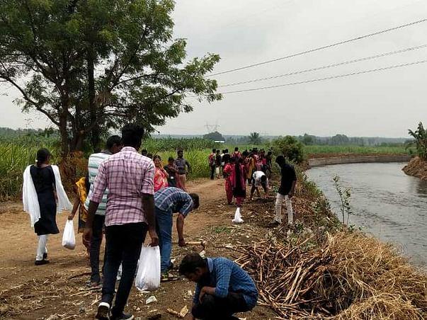 Tree Plantation along Kalingarayan Canal