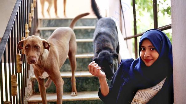 Mahreen and her Rescued dogs