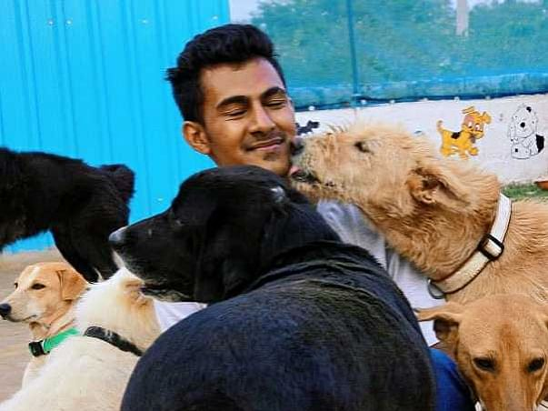 Help us to Rescue Stray Animals who need Medical Attention