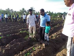Plant 1 tree for humanity