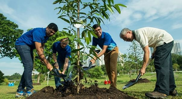 """SAVE TREES – SAVE EARTH"""