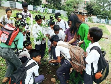 Tree plant by kids