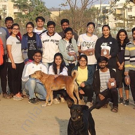 FOOD DONATION AND VACCINATION DRIVE FOR STRAY DOGS IN PUNE.