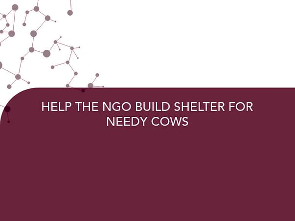 HELP THE NGO BUILD SHELTER FOR NEEDY COWS